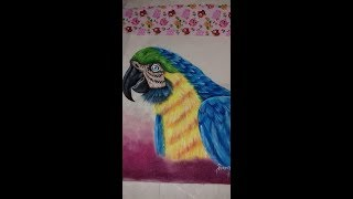 Ecobag arara  finalização – Pintura em tecido com Rosana Duran