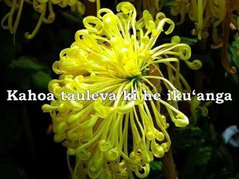 Hone Matala Koula with lyrics - Tonga