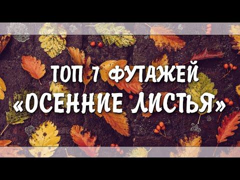 ФУТАЖИ С ЛИСТОПАДОМ | ФУТАЖИ ОСЕННИЕ ЛИСТЬЯ [БЕЗ АВТОРСКИХ ПРАВ]