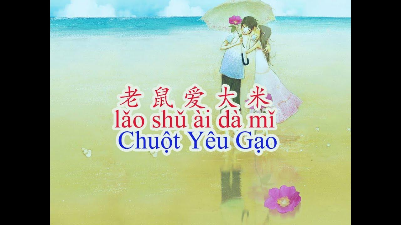 Dạy tiếng Trung qua bài hát Lao Shu Ai Da Mi – Chuột Yêu Gạo
