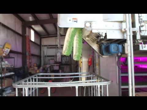 Automated Fodder System 2 0