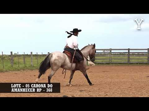 LOTE   05 CARONA DO AMANHECER RP   368