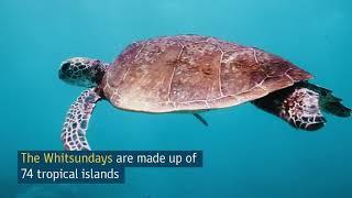 Top 5 Honeymoon Destinations   Luxury & Romance   Tourism Australia