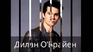 Волчонок/Главные актёры