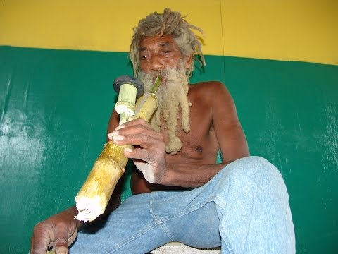 Jamaican Steam Pipe