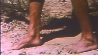 El Paraíso Viviente (1974) Trailer argentino de VHS