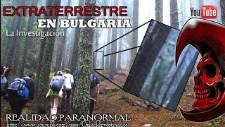 (LA VERDAD) Extraterrestre fotografiado en un bosque de Bulgaria @OxlackCastro