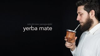 Yerba mate, benefits, accessories, how to drink it.