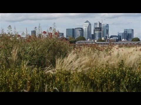 Canary Wharf Thriving PostTransformation
