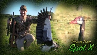 Repeat youtube video Hunting the World's Largest Goose! Stories From Spot X, Episode 4