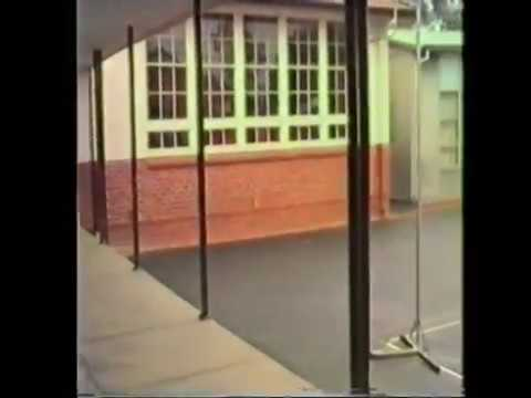 Manning and Manning Primary School [Perth. West Aust.] [1987]