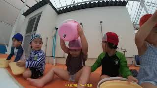 たんぽぽ組のプール活動