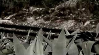 Peppino Impastato - Lunga e' la notte 5 - L'omicidio