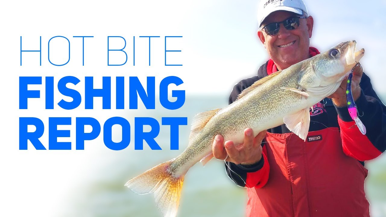 Hot bite fishing report western basin lake erie youtube for Lake erie western basin fishing report