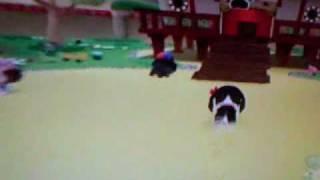 The Dog Island Game Play Reveiw