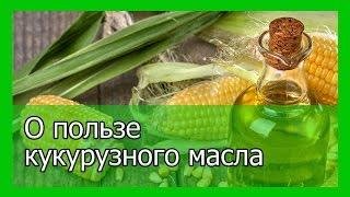 Кукурузное масло  и его полезные свойства