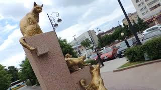 Тюмень. Сквер сибирских кошек.