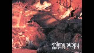 Puppy Gristle 4/4 (Skinny Puppy and Genesis P-Orridge)