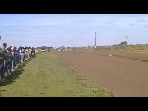GANADOR:FIGARO-MAZIONI-LA-VIOLETA