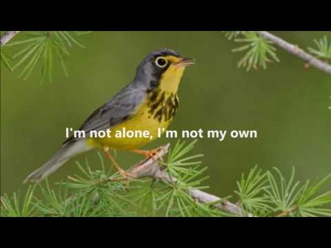 Brother Samuel - I am not alone