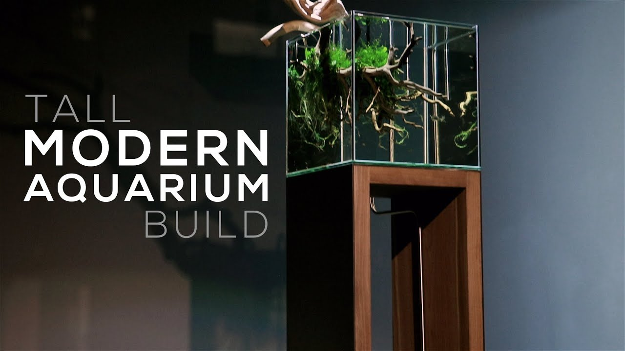 aquarium furniture design. Modern Aquarium Build - DIY Stand Design Ideas Furniture I