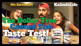 We Survived The Dollar Tree Canned Fish Taste Test! Mukbang