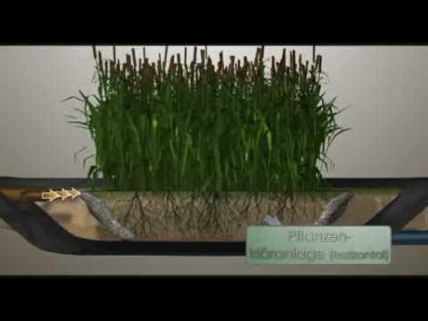Innovativ Pflanzenkläranlage - Kleinkläranlage Funktionsweise - YouTube IH67