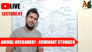 Animal Husbandry | Livestock | Digestive System of Cattle | Ruminant Stomach | Lecture-1