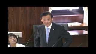 参議院 経済産業委員会 (2012.8.28)