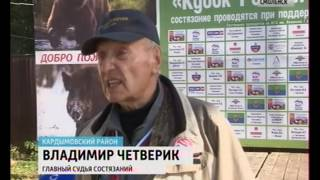 В Смоленской области прошли всероссийские соревнования охотничьих собак