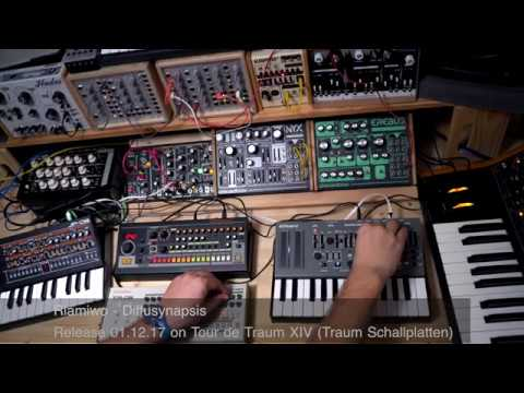 Riamiwo - Diffusynapsis  (Livesession) Tour de Traum / TraumSchallplatten (Riamiwo StudioVlog 70)