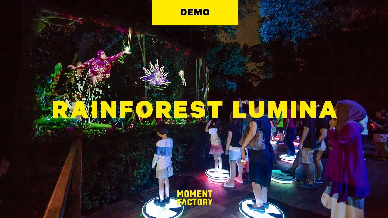 Rainforest Lumina, a multimedia night walk on the wild side