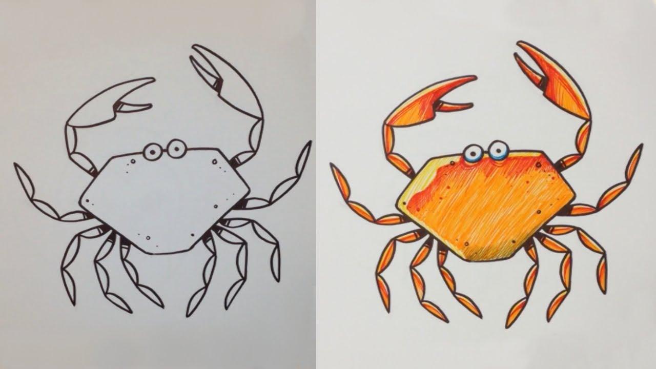 картинки жука паука и краба бизнес-план