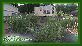 Market Gardening on a Dime | Volunteer Gardener