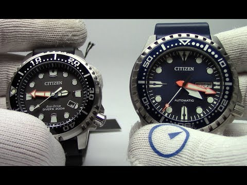 Citizen Diver Review - Automatic Mens Watch That Looks Great Anywhere
