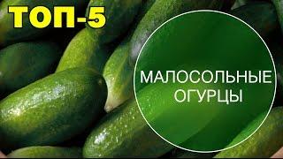 ТОП-5. Малосольные огурцы. Быстрые рецепты