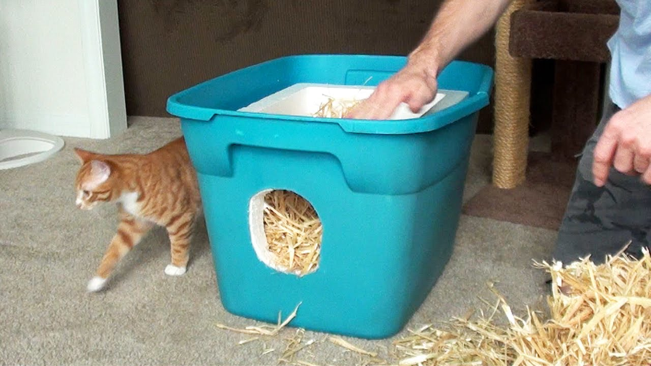 How To Make A Feral Cat Shelter Youtube