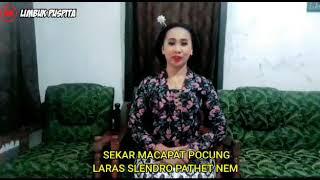 TEMBANG MACAPAT POCUNG LARAS SLENDRO PATHET MANYURA
