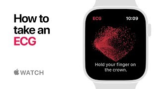 Apple Watch Series 4 - How to take an ECG - Apple