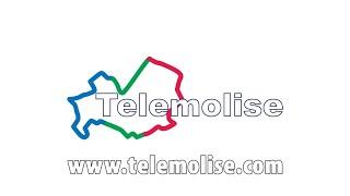 Telemolise Live