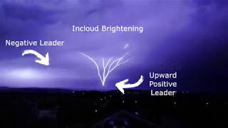 Downward Positive Cloud-to-Ground Lightning Flash Results in Upward Positive Leaders from Tower