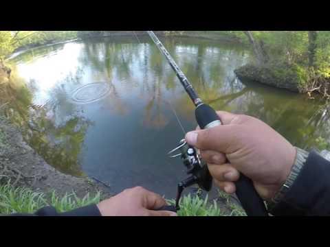 Mohawk River Utica NY smallmouth bass