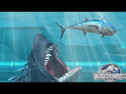 скачать Megalodon игра через торрент - фото 6