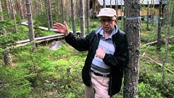 Portrait: Markku Kulmala