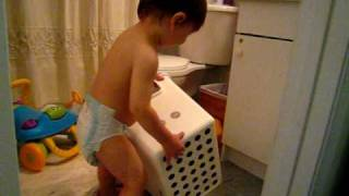 Keado's First Step Stool (18 Month)