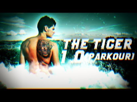 Álex Segura - The Tiger 1.0