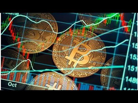Electronic money is driven only by investors 'hype'    NEWS TODAY