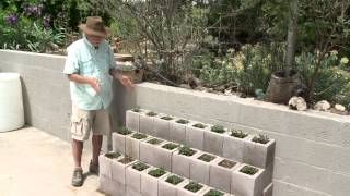 DIY - Building Strawberry Beds