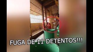 Baixar fuga de 11 detentos em Luziânia