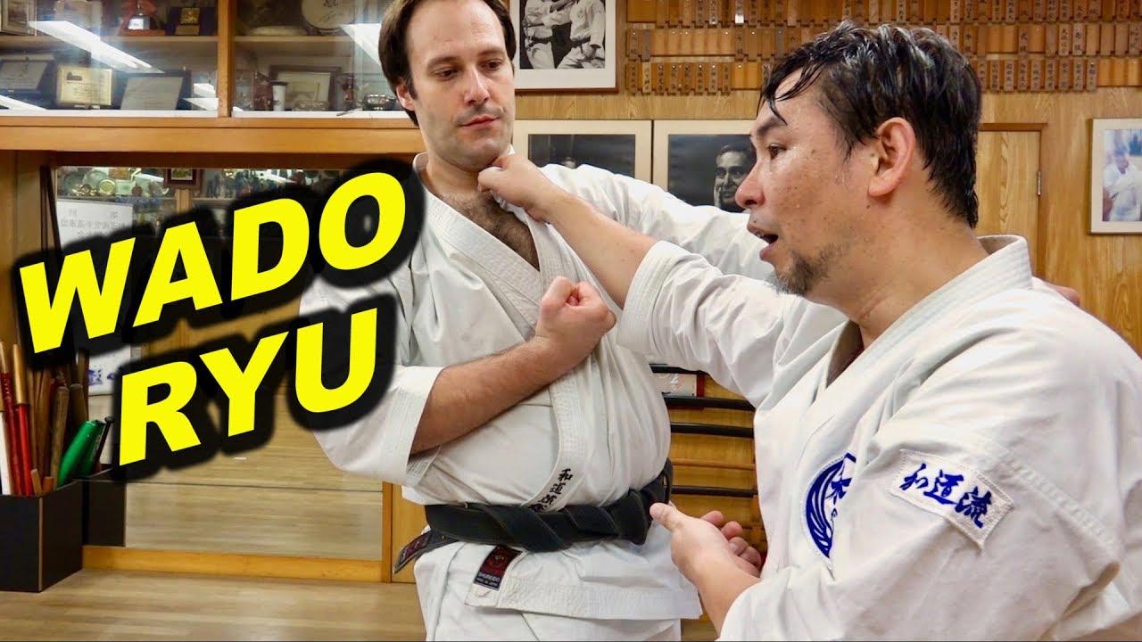 What is Wado-Ryu? Karate, Jujutsu, Japanese swordsmanship 柔術と剣術を取り込んだ空手、和道流空手とは何か?